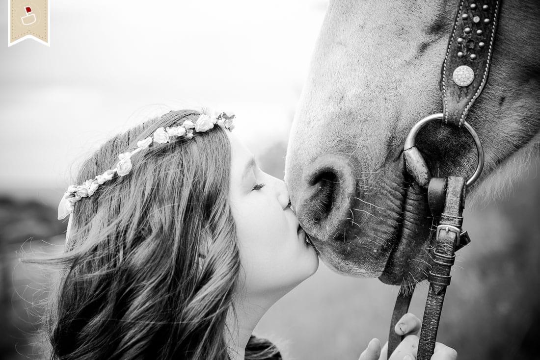 Pferde-Fotografie-Trier_02