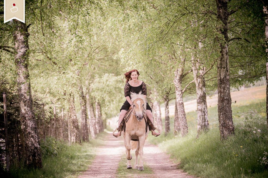 Pferde-Fotografie-Trier_05