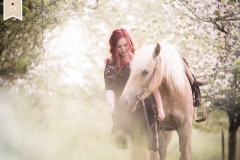 Pferde-Fotografie-Trier_04