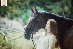 Pferde-Portraits1